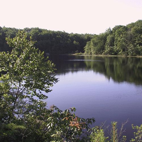 Long-Pond-168-6837