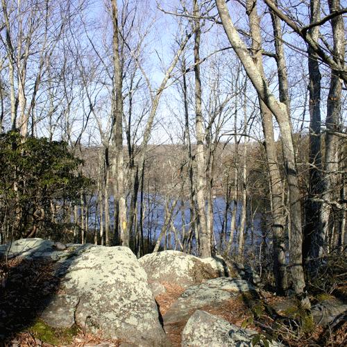 Long-Pond-2433